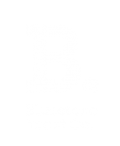 BluestoneLogo